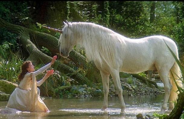 Vieron nacer un «unicornio» entre su rebaño de cabras y ahora es la atracción de un zoológico